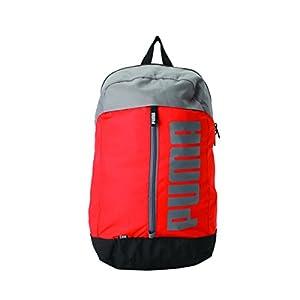 Puma 23 Ltrs Pink Backpack (7566305)