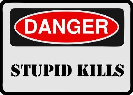 Danger Stupid Kills Bumper Sticker Warning Sign Car Decal 6