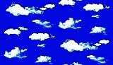 FIXPIX Window Film : KRHS-GP-11412 - Clouds #1 / Large Sheet