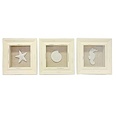 3 Sealife Shadow Boxes Seahorse Starfish Shell Seashell