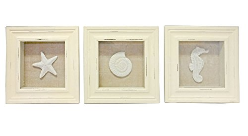 "Beachcombers Sea Life Shadow Frames Set of 3 Wood Picture Photo Box 6.75""x6.75"" Beach Coastal for Shelf Wall Art White - BRING THE BEACH TO YOUR HOUSE: You can almost hear the sound of the surf. Make any house, condo, townhouse or apartment a beach house with this coastal decoration. PERFECT SIZE: Each frame measures 6.75 x 6.75 x 1 inches which makes it perfect for any kitchen, dining room, living room, bedroom, or guest room wall and table decor. Center mounted saw teeth make hanging a breeze. GREAT USES: Makes a great table or wall home decoration or the perfect gift for your friends, family, mom, grandmother, grandfather, brother or sister. - living-room-decor, living-room, home-decor - 41uBL1wgClL -"