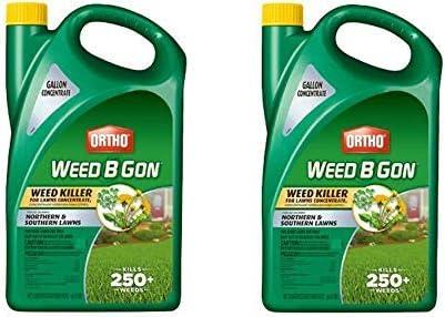 Ortho Herbicida B Gon para césped, Concentrado, 1 galón: Amazon.es: Jardín