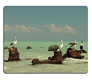 Birds Pelican Resting Rocks Ocean Mouse Pads Customized Made to Order Support Ready 9 7/8 Inch (250mm) X 7 7/8 Inch (200mm) X 1/16 Inch (2mm) High Quality Eco Friendly Cloth with Neoprene Rubber MSD Mouse Pad Desktop Mousepad Laptop Mousepads Comfortable Computer Mouse Mat Cute Gaming Mouse pad