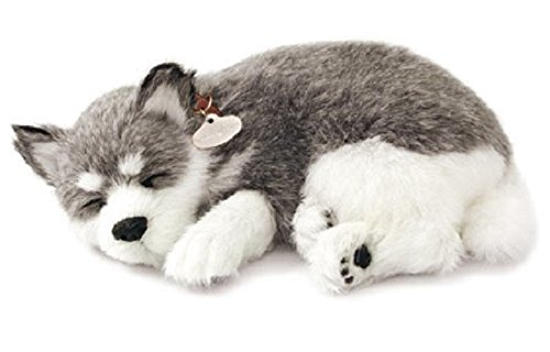 Husky Puppy (88 Unlimited Alaskan Husky Plush)