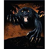 New Signature Collection Queen Size Black Panther Korean Mink Blanket