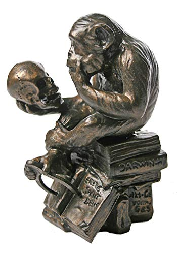 Parastone Museum Monkey with Skull Statue 1892-93 by Rheinhold