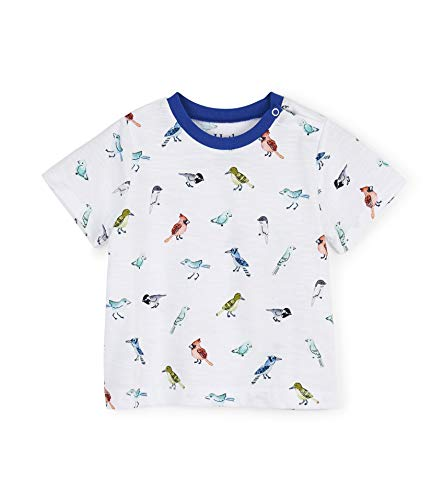 Hatley Boys' Toddler Graphic Tee, Watercolor Birds, 4 Years (Watercolor Graphic Tees)