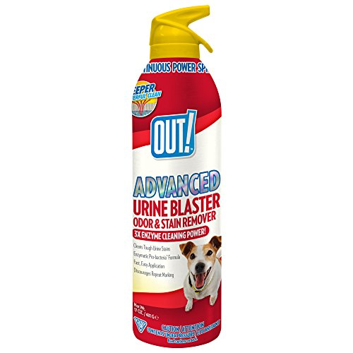 OUT! Advanced Pet Urine Blaster, 17 fl. oz.