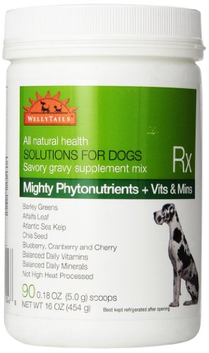 WellyTails Mighty Green Phytonutrients Plus Vitamins and Minerals to Promote Good Health with Barley Greens, Alfalfa and Kelp Antioxidant Dog Supplement 16 oz
