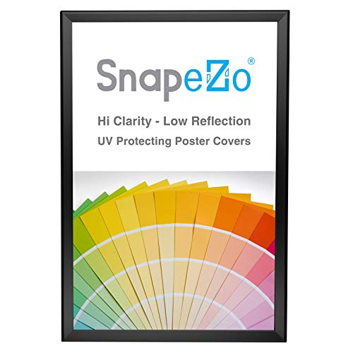 White Clear Overlay (SnapeZo Poster Frame 20x30 Inches, Black 1.25