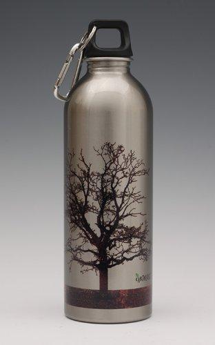 Amazon.com: earthlust Botella de agua de acero inoxidable ...
