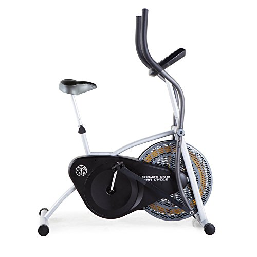 Gold's Gym GGEX61914 Air Cycle ICON Health and Fitness