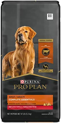 Purina Pro Plan With Probiotics Shredded Blend High Protein, Digestive Health Adult Dry Dog Food (Packaging May Vary) 2