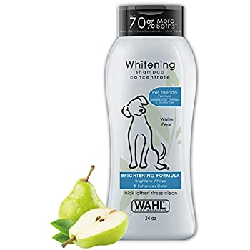 Wahl White Pear Brightening Shampoo for Pets - Whitening & Animal Odor Control with Silky Smooth Results for Grooming Dirty Dogs - 24 Oz