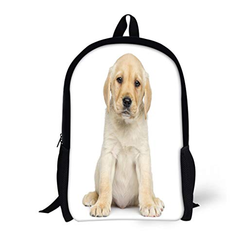 vel Daypack Beige Dog Labrador Puppy Sitting and Facing White Waterproof School Bag ()