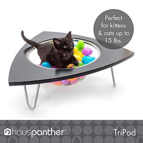 41uE5cpnVuL - The Cat Lounge Pod