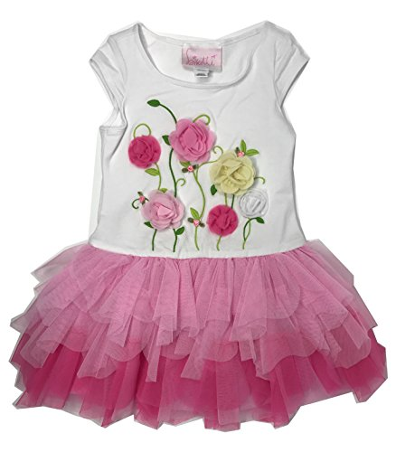 Biscotti Floral Dress (Biscotti Girls Floral Dress, Pink (2T/3T))