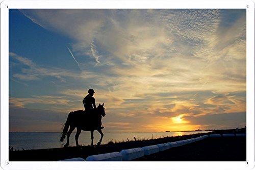 Planet Scene Poster - Horseback Rider Girl Silhouette Horse Lake Borders 51949 Tin Sign (8
