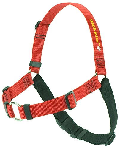 - SENSE-ation No-Pull Dog Harness - Medium/Large (Wide) Red with Black