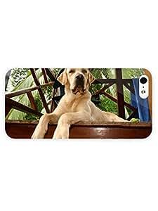 3d Full Wrap Case for iPhone 5/5s Animal Golden Labrador Retriever