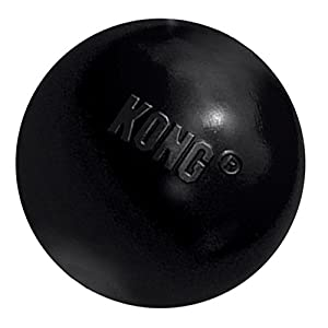 KONG Extreme Ball Dog Toy 34