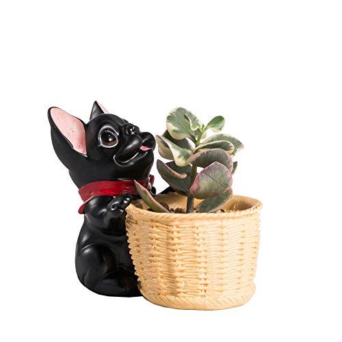 Tabletop Decorative Black French Bull Dog Resin Planter Plants Cactus Succulent Container Home Garden Display Flower Pot Decor Bonsai Miniature No Plants (Kawaii Friday Halloween)