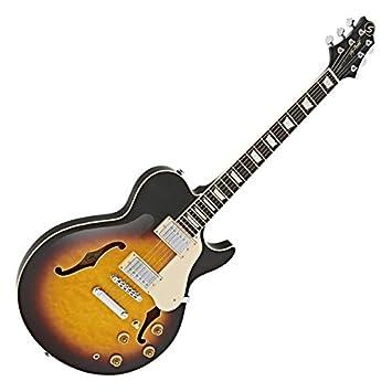 Greg Bennett Royale RL-3 Guitarra Eléctrica Vintage Sunburst: Amazon.es: Instrumentos musicales