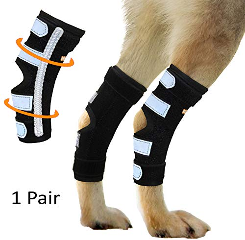 NeoAlly Dog Canine Braces for Rear Legs Super Supportive with Dual Metal Spring Inserts to Stabilize Dog Hind Legs, Help Dogs with Injuries, Sprains, Arthritis, ACL (M Pair)