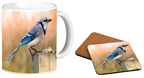 Rikki Knight Blue Jay Bird On Tree Trunk Design Photo Quality 11 oz Ceramic Coffee Mug + Matching Square Cork Backed Coaster