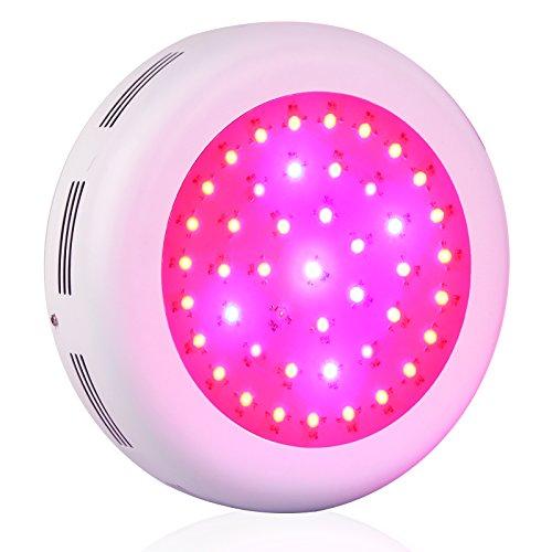 Lightimetunnel Lights Spectrum Indoor Growing