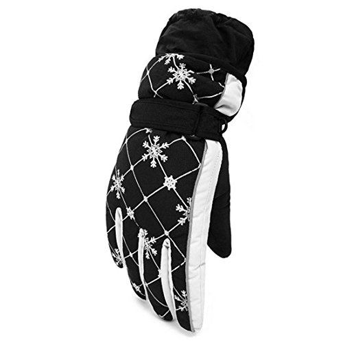 ChicSoleil Winter Snow Ski Gloves - Waterproof Windproof Thermal Shell Synthetic Leather Palm for Skiing Snowboarding Shredding Shoveling - Gloves Windproof Epic