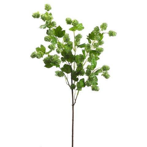 40-Silk-Hops-Flower-Spray-Green-pack-of-6