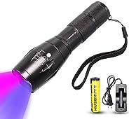 UV Flashlight LED Black Light 395nm Handheld Flashlights Zoomablle 365nm Double Lamp Ultraviolet Blacklight De