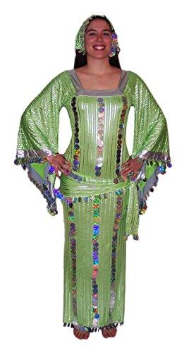 (Women Belly Dance Folkloric Baladi Egyptian Galabeya Dancing Dress Costume (L/XL, Green& Silver))