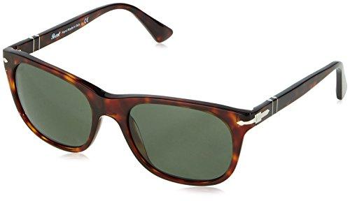 soleil Brown 3102 Homme Lunettes Tortoise Stripped Persol 53mm 24 Grey de Pour 31 qAOzwAEx