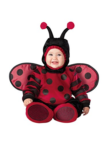 InCharacter Costumes Baby's Itty Bitty Lady Bug Costume, Red, (Baby Ladybug Costume)