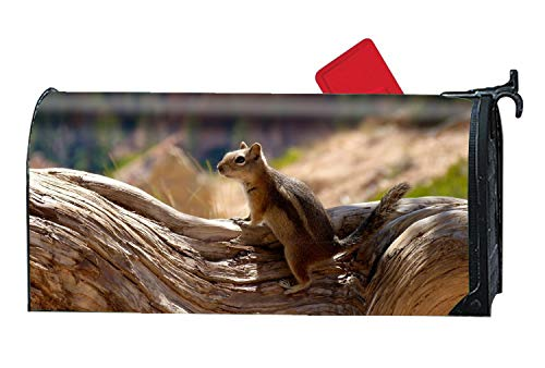 Residential Mount Horse Post - yyoungsell SquirrelMagnetic Mailbox Cover Fits StandardSized Mailboxes