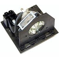 OEM Rca RPTV Lamp for Model HD50LPW175 Original Bulb and Generic Housing