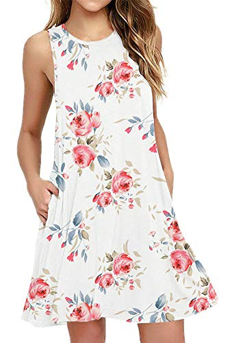 (BISHUIGE Women's Floral Work Casual Spring Dresses Round Neck Juniors Sundresses with Pockets XFloral White L)