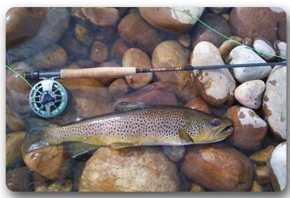 fishing Non Slip Entryways Rectangle Mat
