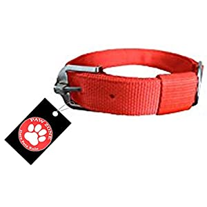 Pawzone Red Nylon 1.25 Inch Dog Collar