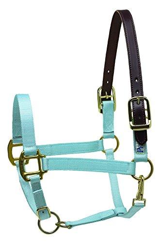 - Perri's Premium Nylon Safety Halter, Horse, Sky Blue