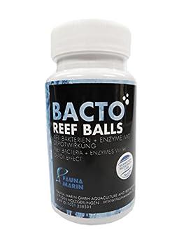 Fauna Marin bacto Reef Balls 100 ml Riff de bacterias: Amazon.es ...