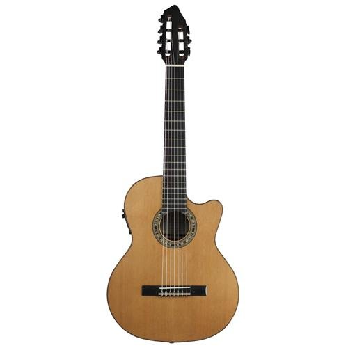 7 String Arch Top - 4