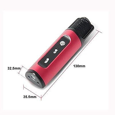 Wireless Microphone FM Karaoke Car KTV Microphone Handheld Portable With Mic Speaker Karaoke Player For IOS& Android & Windows ROOP