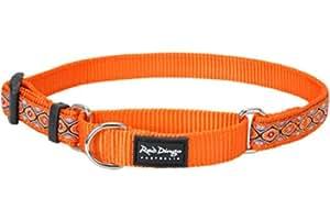 Red Dingo Designer Martingale Dog Collar, Large, Snake Eyes Orange