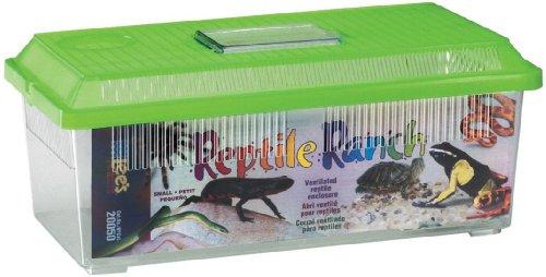 Reptile Ranch Aquarium - 4