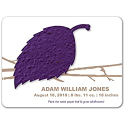 Bloomin Plantable Aspen Birth Announcement Favor with Seed Paper - Violet {25 Card Set}