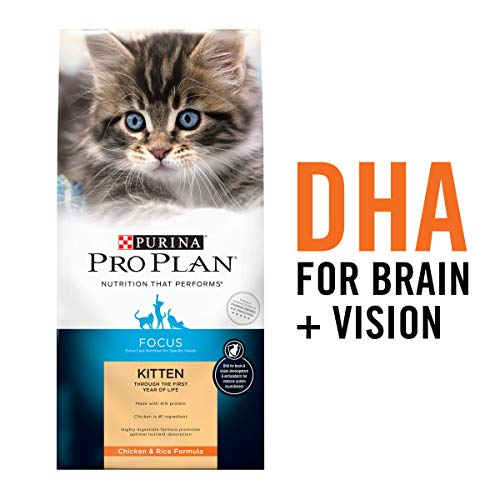 Purina Pro Plan High Protein Dry Kitten Food