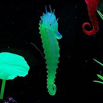 Grandey - 3 piezas de hippocampus de caballo de mar con efecto luminoso para acuario: Amazon.es: Productos para mascotas